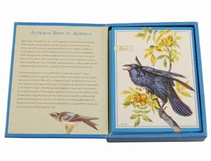 Audubon Birds of America 18 Notecard Set | Cissie Peltz Notecard Set