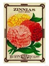 Zinnias Seed Packet Magnet